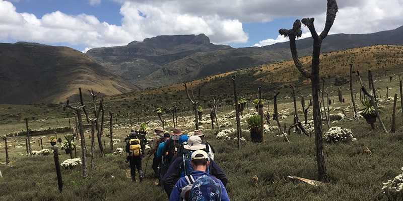 Hiking Mountain Elgon in Uganda
