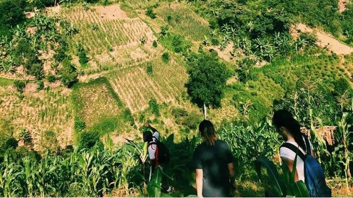 Walks at Mountain Elgon Uganda