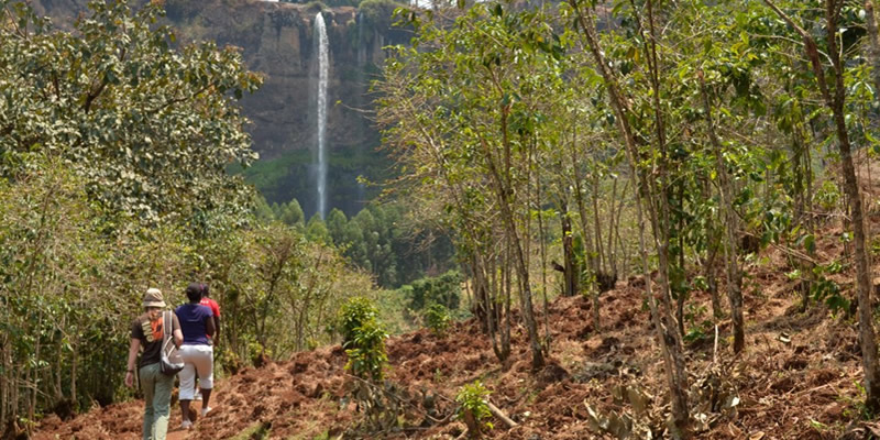 Nature Walks at Sipi Falls Uganda